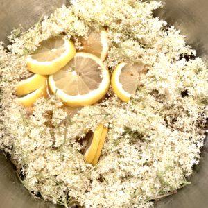 Holunderblüten und Zitronen im Topf