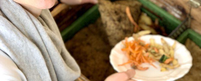 Würmer füttern - 2
